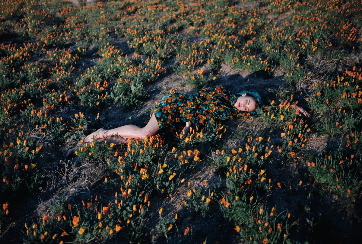 Talie in poppy fields